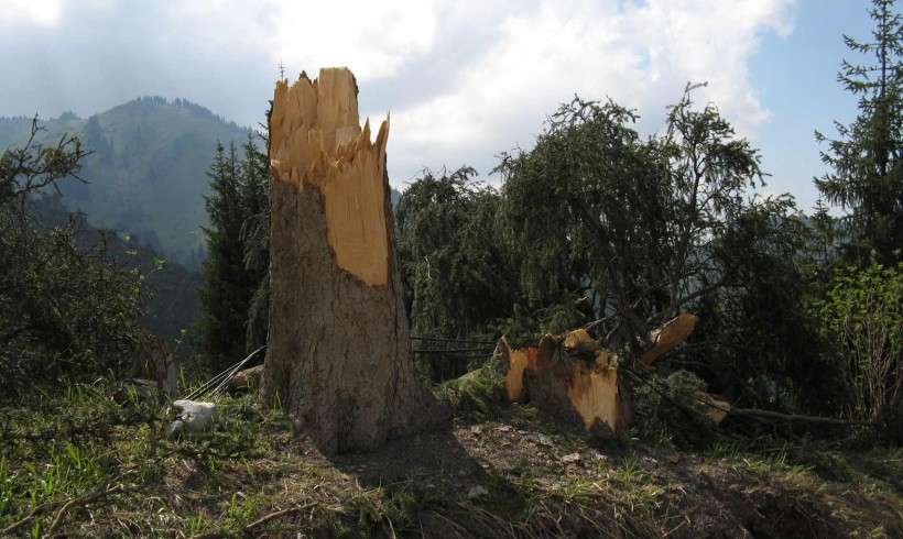 Ураган некомпетентности, или Опять виновата природа!