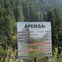 Аренда в национальном парке – арифметика обогащения