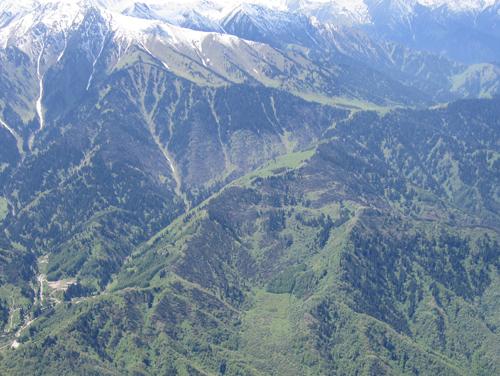 Акимат Алматы согласовал проект, который не соответствует нормам природоохранного законодательства!