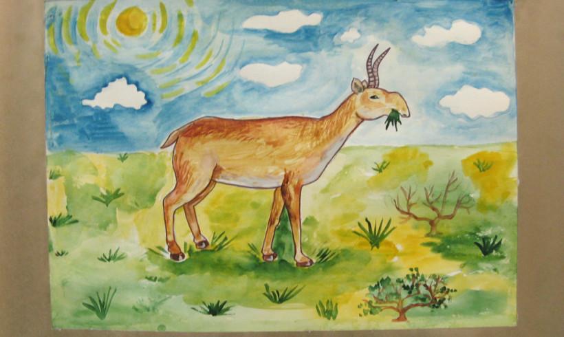 АСБК объявляет детский конкурс творческих и научных работ «Сайгак – символ казахской степи»