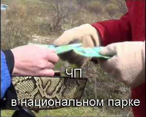 ЧП в национальном парке (смотреть видеофильм)