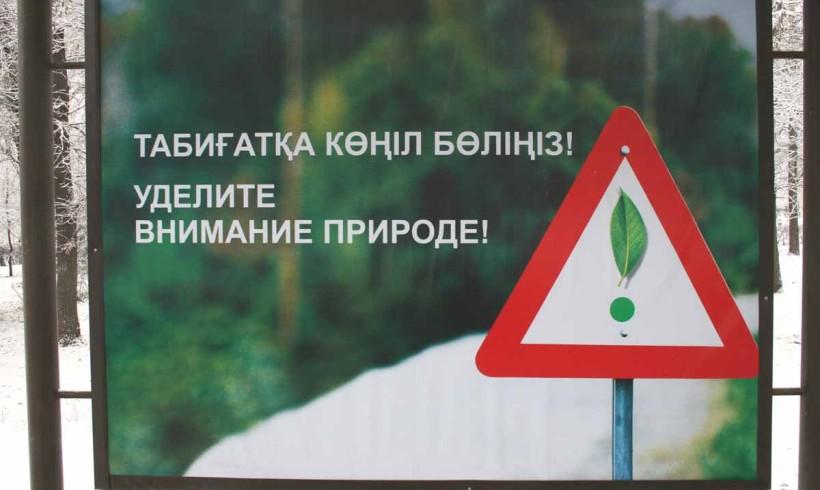 Как «уделяют внимание природе»