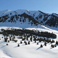 Общественность призвала руководство ЕБРР не финансировать строительства курорта в национальном парке