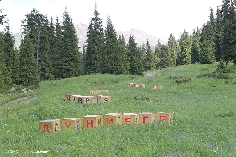 """""""Другие буквы"""", инсталляция, Асель Кадырханова"""