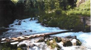 Фотография предоставленная администрацией парка