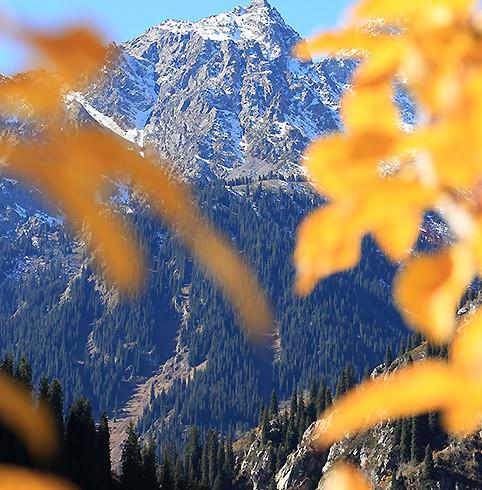 Фотоальбом «Осень в горах»