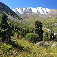 Поздравление с 20-летним юбилеем Иле-Алатауского национального парка