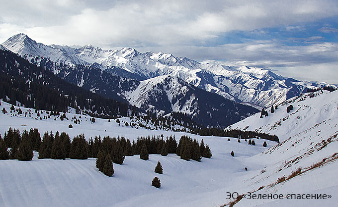 "Petition against construction of the ""Kok-Jailau"" ski resort is filed!"