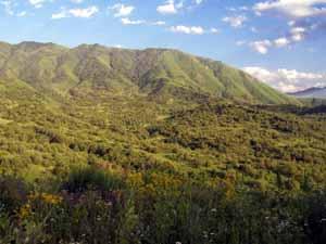 Создана новая ООПТ — Жонгар-Алатауский государственный национальный природный парк!