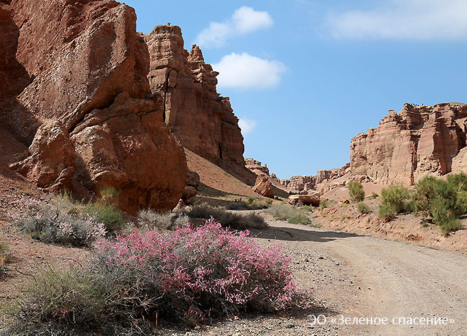 Чарынский государственный национальный природный парк