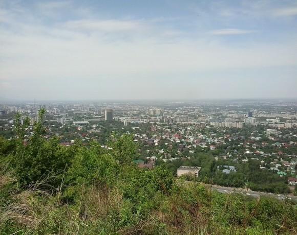 Что может сделать каждый, чтобы улучшить экологическую обстановку в Алматы?