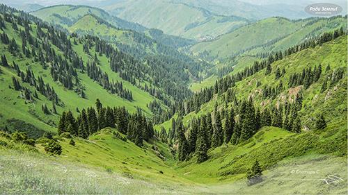 Ущелье Бутаковское. Заилийский Алатау (фотообои)