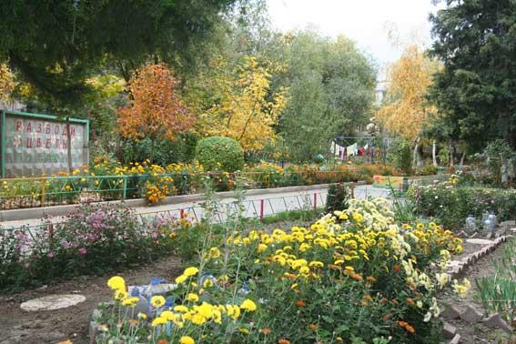 Цветочные дворы Алматы