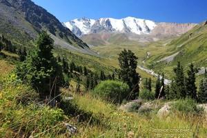 Большое-алматинское-ущелье