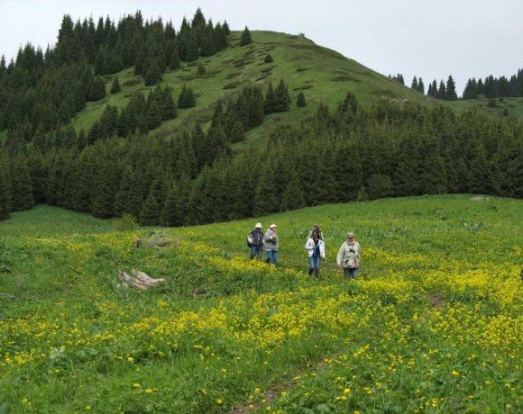 Общественность повторно обратилась к Президенту с просьбой остановить строительство в национальном парке (02.04.2013)