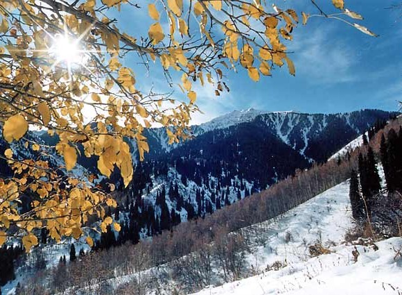 Осень в горах_Фото А.Жданко