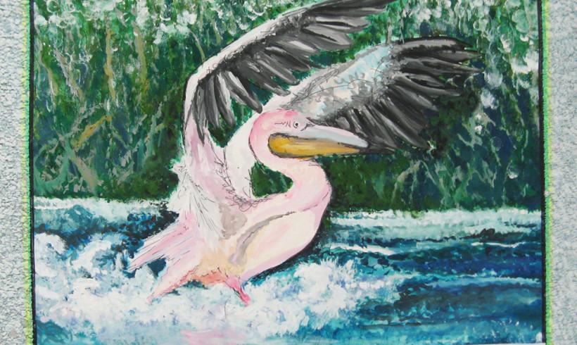 Призеры городского конкурса рисунков «Редкие животные Семиречья»