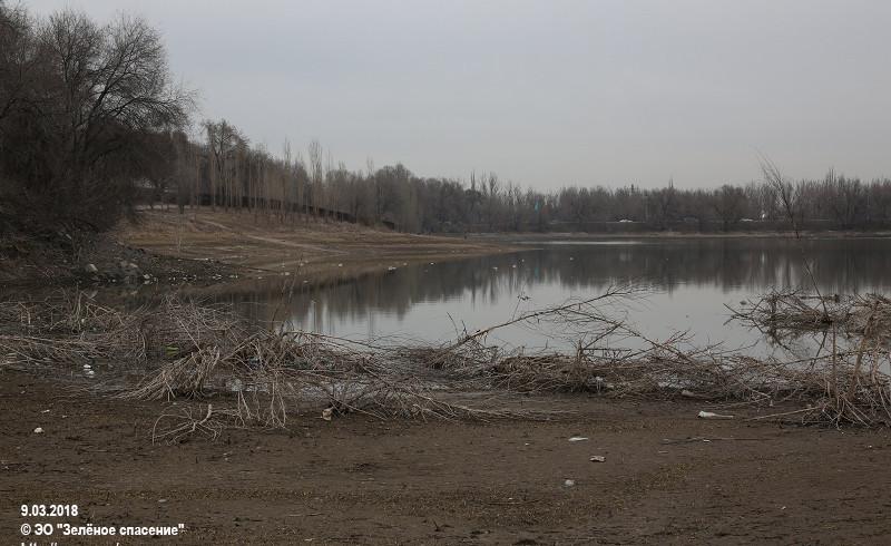 В Аэропортовском озере обнаружено фекальное загрязнение