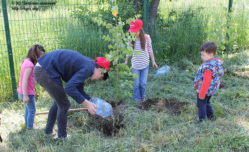 Сделаем Казахстан зеленее вместе с Henkel
