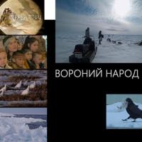 Светлана Быченко – о птицах и о людях