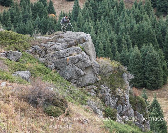 Результаты мониторинга национальных парков Алматинской области