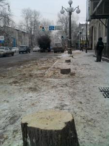 вырубка деревьев у ГУМа1-Кунаева, 21, угол Маметовой. ГУМ