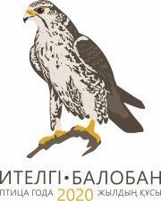 Сокол балобан — Птица года 2020