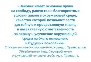 Цитата-1-300x204