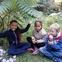 Деревья и дети нашего двора