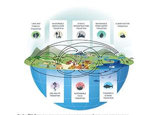 Опубликован доклад «Глобальная перспектива в области биоразнообразия 5»