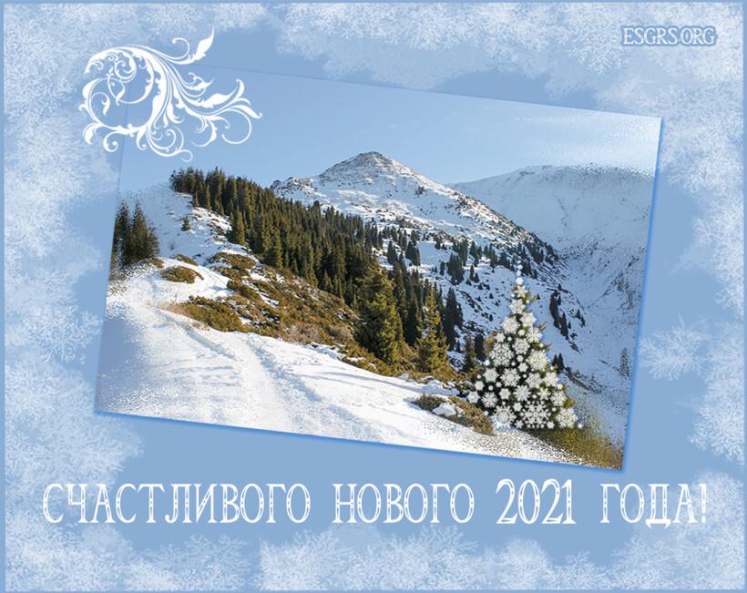 НГ2021_forsite_1080