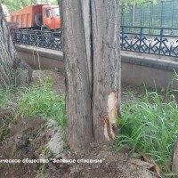 Усилен контроль за строительными работами в парках города